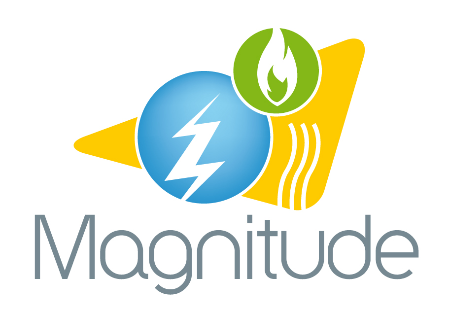Magnitude Project workshop on how can sector coupling enable energy provision